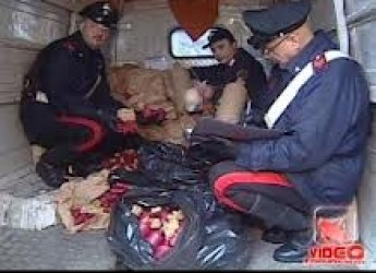 Capodanno 2013. Una festa che ha coinvolto l'intero 'villaggio globale'. Due morti e 361 feriti in Italia.