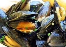 Cervia. Le eccellenze del mare al centro dell'evento 'cozze e pesce in festa'. Un circuito gastronomico a Borgomarina e nel centro storico.