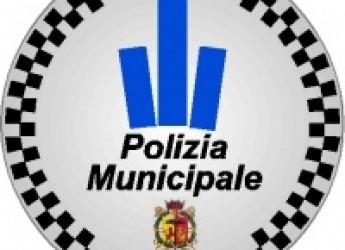 Ravenna. Polizia Municipale. Un 30enne è stato denunciato dopo aver esibito una patente falsa.