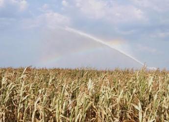 Emilia Romagna. Rimini: decreto ministeriale per la siccità della scorsa estate.