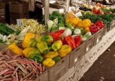 Forlì. La spesa quotidiana diventa 'didattica' con gli incontri promossi da Slow Food.
