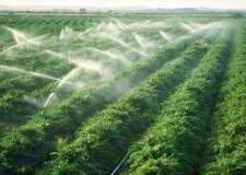 Emilia Romagna. Politica agricola: novità europee su Dop e Igp.