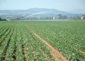 Emilia Romagna. Oltre 10 milioni per creare laghetti per l'agricoltura.