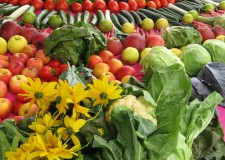 Emilia Romagna. Per il settore agroalimentare in arrivo 20 milioni di euro.