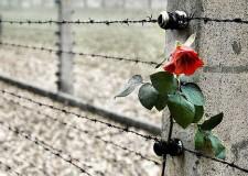 Faenza. Giorno della Memoria. Ricco programma di celebrazioni per ricordare l'abbattimento dei cancelli di Auschwitz-Birkenau