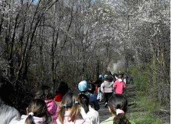 Ravenna. Presentato il programma 'Ambiente 2013′ e il nuovo multicentro Ceas.