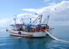 Emilia Romagna. Pesca: pubblicato il decreto per la rottamazione delle imbarcazioni.