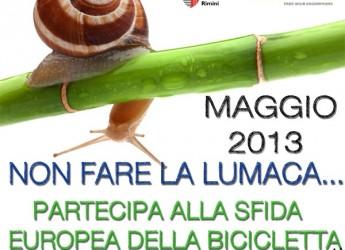 Anche Rimini alla sfida europea della bicicletta.