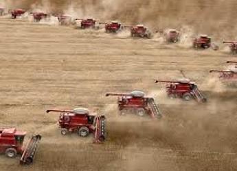 Emilia Romagna. Finanziamenti per rendere più moderne e competitive le aziende agricole.