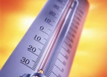 Ravenna. Prorogata fino a venerdì l'allerta per ondate di calore da parte della Protezione civile.