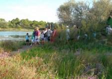Lido di Classe. Dal 23 al 28 luglio al via il Festival Naturae.