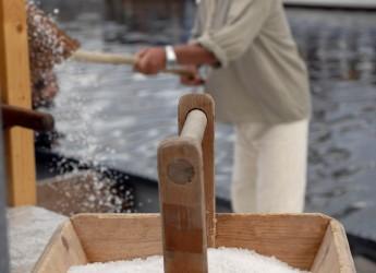Cervia 'Sapore di sale'. Una festa da leccarsi i baffi, in un tripudio di gusti e sapori ( settembre dal 6 – 8 settembre).