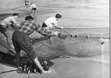 Cesenatico. Tradizione e usi marinari. Torna  la pesca 'alla tratta',  praticata sulla spiaggia per molti secoli.