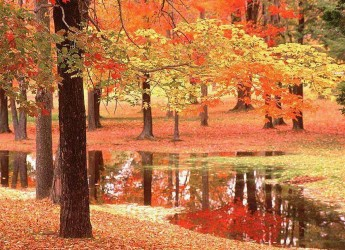 Maltempo: estate al capolinea. Da domenica 15 settembre parte l'autunno.