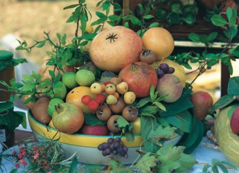 Casola Valsenio. Un nuovo laboratorio certificato per la trasformazione delle erbe e dei frutti dimenticati.