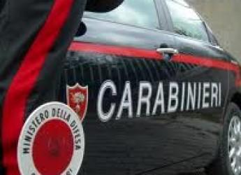 Cesena. Vandali in azione nel cantiere del ponte di Sala. Il comune allerta le forze dell'ordine per individuare i responsabili.