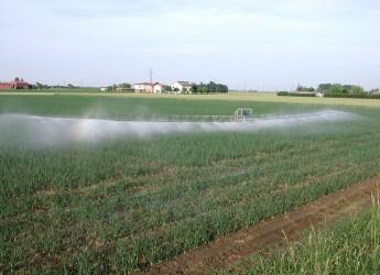 Emilia Romagna. Irrigazione, 6 milioni di euro dalla Regione per sostituire i vecchi impianti.
