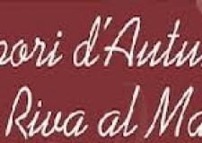 Rimini il 23 e 24 Novembre, sapori d'autunno in riva al mare