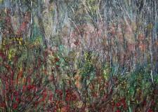 Rimini. Al Centro Direzionale del GrosRimini si potranno ammirare le opere di Fiorella Vandi.