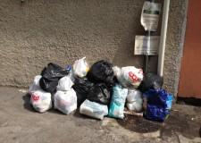 Massa Lombarda. Lotta all'abbandono dei rifiuti, controlli e sensibilizzazione