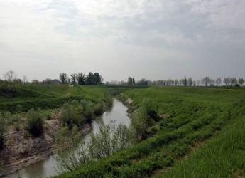Bagnacavallo. All'ecomuseo delle erbe palustri al via il progetto 'Lamone bene comune' per nuovo contratto di fiume