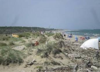 Ravenna. Volontari all'opera per ripulire la spiaggia di Lido di Dante.