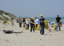 Ravenna. Domenica 30 marzo volontari al lavoro per pulire la spiaggia di Lido di Dante