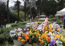 Riccione. Giardini d'Autore: l'edizione di primavera chiude a quota 9000 visitatori.
