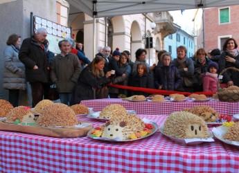 Mercato Saraceno. Prima festa del Porcospino. Clamoroso successo per una tradizione molto radicata.