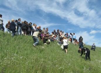 Emilia Romagna. Lugo: corso sulle erbe da campo a numero chiuso, ma con cena e  balli aperti a tutti.