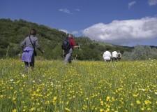 Emilia Romagna all'aria aperta.Tante proposte: tra cui 10 in bici o Mtb, 11 ciaspolate e 5 safari notturni.