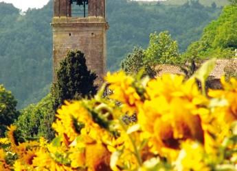Emilia Romagna. La Giornata verde d'una Regione. Trekking, escursioni, uscite in bici e in barca.