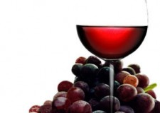 Roma. Emanuela Medi presenta il suo libro 'Vivere Frizzante'. Una dedica speciale che parla di vino ai figli.