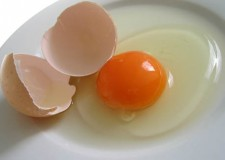Bassa Romagna. Contro il rischio Salmonellosi, no a somministrazione uova crude fino al 30 settembre.