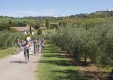Romagna: un giornalista tedesco e uno spagnolo in un biketour sulle strade di Pantani.