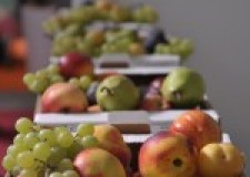 Cesena: pronto il programma del Macfrut 2014. Dal 24 al 26 settembre una trentina di appuntamenti sui principali temi del settore.