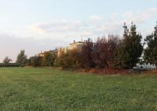 Cotignola: a Barbiano questa sera incontro pubblico per riqualificazione area verde.