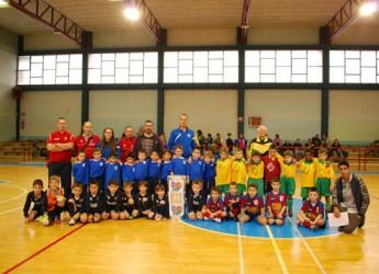 Lugo. Una domenica di beneficienza e sporto con 'Lugo gioca insieme'.