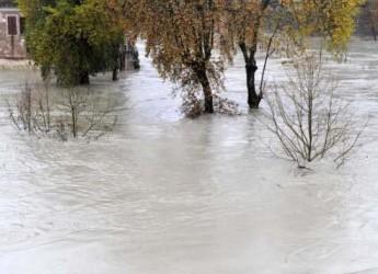 Ravenna. La Protezione Civile ha attivato la fase di preallarme per i fiumi Savio e Bevano.