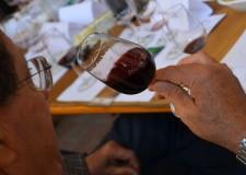Bagnacavallo. Al via la 'competizione' tra i produttori di Bursòn, al vincitore l'ambita etichetta nera e il compito di confrontarsi con altri prestigiosi vini italiani.