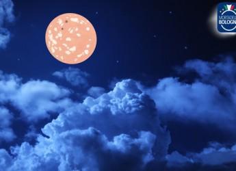 Bologna. La Mortadella segna un +4,3% nelle vendite. Nel 2014 sono state prodotte circa 254 milioni di fette che, messe una accanto all'altra, coprirebbero 5 volte il giro della Luna.