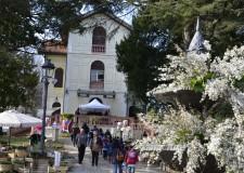 Riccione. Giardini d'autore ha fatto della Perla la città dal 'pollice verde', circa 8mila visitatori in tre giorni.