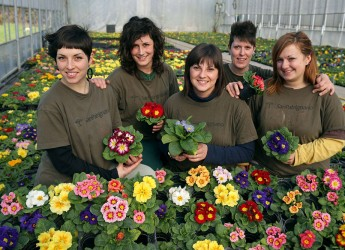 Forlimpopoli. Il vivaio di San Patrignano sarà presente alla 11ma edizione delle festa 'Fiorimpopoli' con le proprie coltivazioni.