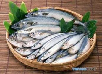 Ravenna. La tradizionale festa del pesce azzurro a Santo Stefano è pronta. Un'iniziativa inserita nel programma di 'Estate sotto le stelle'.