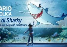Cattolica. Fino a fine agosto spettacoli per bambini nella 'Baia di Sharky' per scoprire attraverso il gioco gli abitanti del mondo marino.