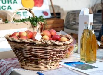 Alfonsine. Nasce il mercato del biologico. Un progetto per valorizzare i produttori locali e i prodotti di qualità del territorio.