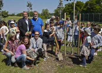 Cervia. Grazie a Hera e alla campagna 'regala un albero alla tua città' piantumati 25 nuovi alberi per una città sostenibile.