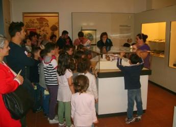 Rimini. Visite guidate serali al Museo della Città in occasione del Rimini Shopping Night.