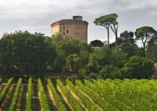 Dozza. Per la rassegna 'Sere d'estate fresche di vino' alla Rocca arriva il Centesimino, un vino autoctono dal nome curioso.