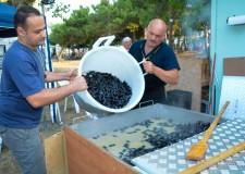 Ravenna. Punta Marina Terme. Torna la Sagra della cozza in pineta, un week end all'insegna dei frutti di mare.